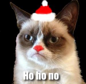 Holiday-Grumpy-Cat-Internet-Meme